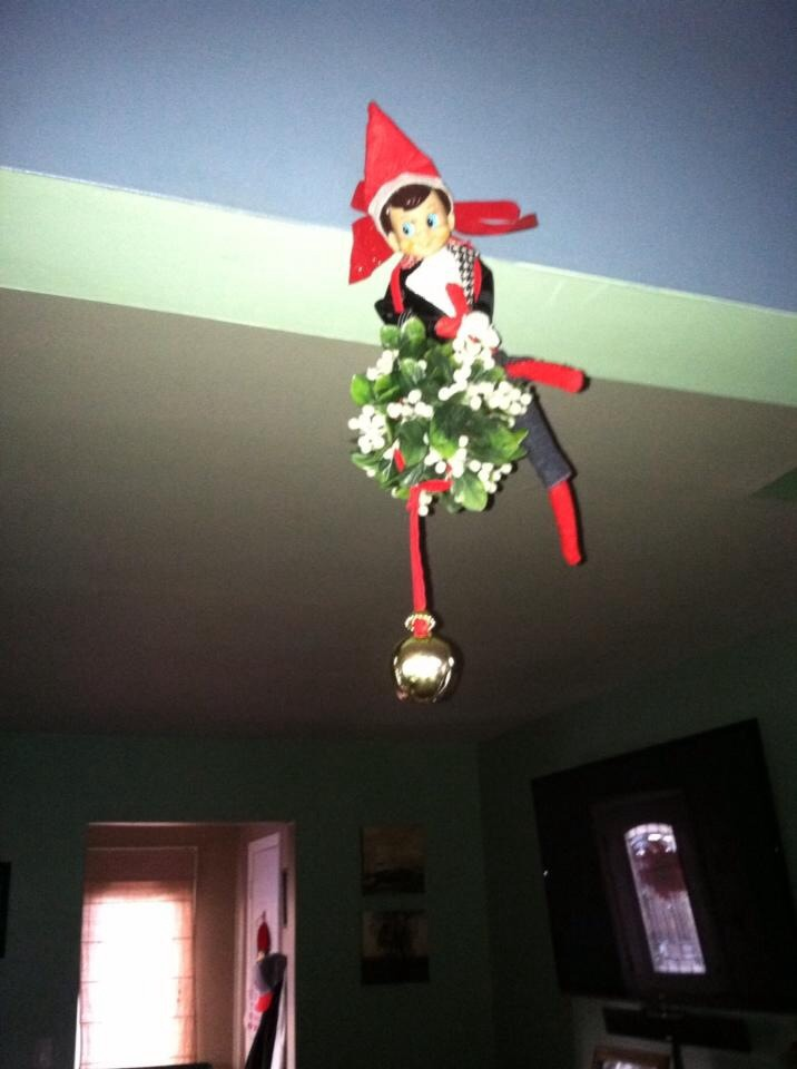 Some of our elf's antics